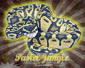 Burst Series Wallpaper- Ball Python Pastel Jungle Morph