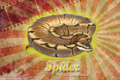 Burst Series Wallpaper - Ball Python Spider Morph
