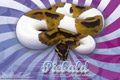 Vertigo Series Wallpaper - Ball Python Piebald Morph